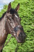 Le Mieux Comfort Nose Nets - For Horses - Black - Large - BN