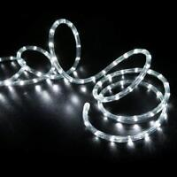 Cool White LED Rope 100ft 110V 2Wire Flexible Holiday Outdoor Lighting Christmas
