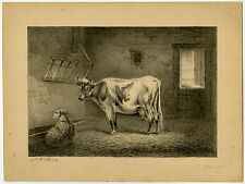 Antique Drawing-SHEEP-COW-STABLE-Stark-ca. 1890