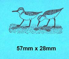 Sanderlings Sea Birds Rubber Stamp