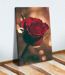 CANVAS WALL ART PRINT ARTWORK 30MM DEEP FRAME  SINGLE RED ROSE VINTAGE LOOK