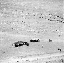 JERASH c. 1960 - Tentes Nomades Jordanie - Négatif 6 x 6 - JOR 19