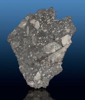 SUBERB and RARE NWA 8586 Lunar Meteorite - Complete Slice of a Moon Rock