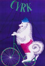 Gustaw MAJEWSKI Cyrk - Circus Dog riding bicycle print art abstract wall