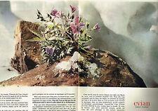 Publicité advertising 1967 evian mineral water the snow melt (2 pages)