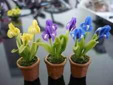 Set of 3 Iris Flower Plant in Terracotta Pot Dollhouse Miniatures Garden