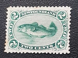 Newfoundland Scott # 24, MH, XF