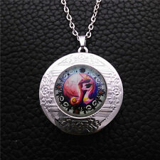 New For My Little Pony Glass Tibetan Silver Chain Locket Pendant Necklace  R109