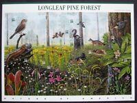 2002 4th Nature of America 34c Sc 3611 sheet Longleaf Pine