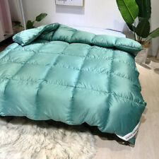Duvet Core Can Be Washed, Exquisite Fluffy Thick Winter Bedding Feather Quilt