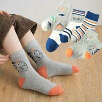 5 Pairs Toddler Boys  Socks Cotton Breathable Dinosaur