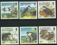 ALDERNEY- 2000 'ENDANGERED SPECIES - PEREGRINE FALCONS' Set of 6 WWF MNH [A0164]