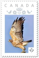 HAWK = Personalized Picture Postage stamp MNH Canada 2018 [p18-07s11]