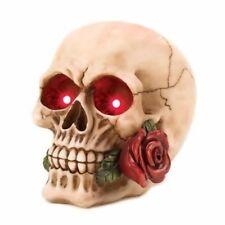Cráneo de Halloween