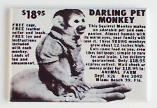 Darling Pet Monkey FRIDGE MAGNET comic book advertisement
