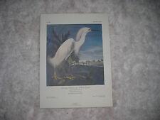 Birds of America Print Snowy Heron 1986 74/500 by John J. Audubon F,R,S,
