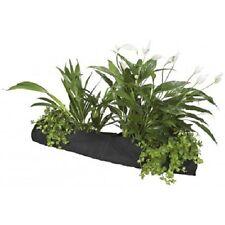 15CM x 80CM jardin bassin poisson plante chaussettes bordure plantes marge plantation grow