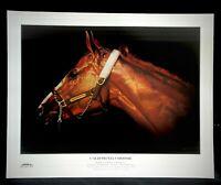 California Chrome Vox Populi Poster Victor Espinoza Kentucky Derby Horse Racing