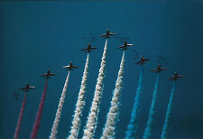 RAF Red ARROWS Multi (5) Signed 12x8 Photo Autograph COA AFTAL Display Team RARE