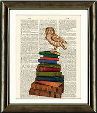 Antique Book page Art Print - Owl On Vintage BOOKS Dictionary print