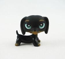 Littlest Pet Shop LPS525 Toys  Blue Eyes Black Dachshund Dog Chien Teckel Puppy