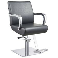 Styling Chair European Design Hydraulic Chairs Beauty Salon Equipment - Meteor