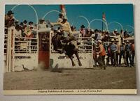 Calgary Alberta Canada Calgary Exhibition & Stampede Magestic Postcard Vintage