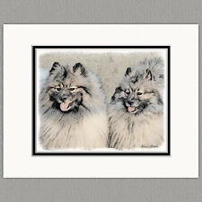 Keeshond Brothers Portrait Original Art Print 8x10 Matted to 11x14