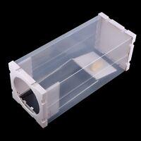 Cage à Piège de Rats en ABS et de Plomb pur Blanc Léger Portable Souris Pratique