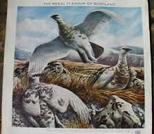1960's Chivas Regal Whisky Advertisement Ptarmigan Grouse Scotland