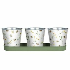 Fallen Fruits Set of 3  Bee Print Herb Pots on a Tray - White/Yellow/Green