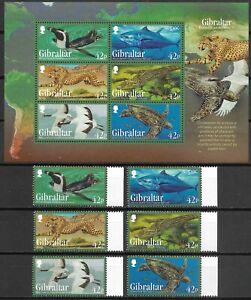 """GIBRALTAR - 2013 MNH """"Endangered Animals III"""" Souvenir Sheet & Complete Set !!"""
