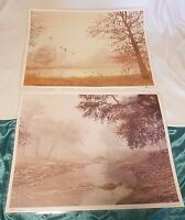 Lot of 2 Vintage Robert Peerman Lithograph Print 1979 Transart Industries Nature