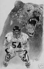 Brian Urlacher Chicago Bears picture poster ART
