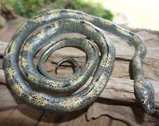 "Gray Rat Snake - 52"" Realistic Rubber Snake Replica"