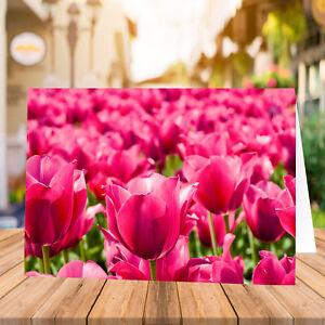 Blanko Grußkarte ohne Text Geburtstag mit Umschlag - Grußkarte Frühling Tulpen