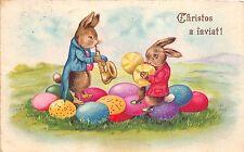 B27339 Beautiful New year Humanised Lapin Chanson Rabbit Trompette Trompet