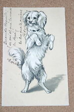Vintage Postcard: Spaniel? Toy Dog, Artist Portait