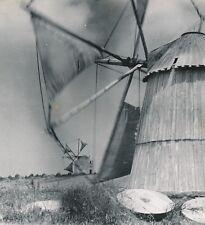 PENICHE c. 1950 - Moulins à Vent Portugal - NV 224