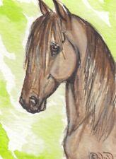 ACEO original Watercolor Art Card Horse Dun Mustang stallion on summer green