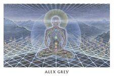 "OFFICIAL ALEX GREY ""Theologue"" Poster Print yoga meditation tool grateful dead"