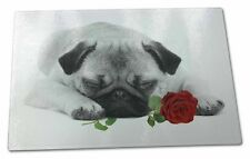 Pug (B+W Photo) with Red Rose Extra Large Toughened Glass Cutting,, AD-P92R2GCBL