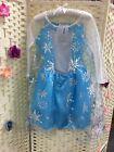 Disney Frozen Princess Elsa Fancy Dress Costume Age 3/4, 5yrs
