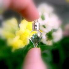 10 Vial Pendants TEAR (miniature/glass/bottles/vials/mini/pendant/silver/caps)