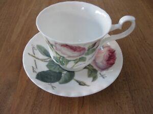 Roy Kirkham Redoute Roses Kaffeetasse mit Untertasse