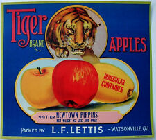 TIGER~RARE VINTAGE 1920s WATSONVILLE CALIFORNIA NEWTOWN PIPPIN APPLE CRATE LABEL