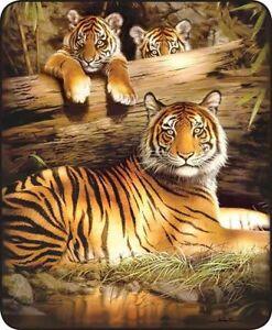 Queen Size Wild Bengal Tiger Orange Cubs Scene Mink Faux Fur Blanket Super Plush