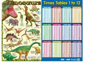 Dinosaur Poster and Times Tables poster -   Educational A2 size - 2 best sellers