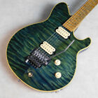 Terry Rogers  Mallie Used Musical Instruments  Electric Guitar  Terry Rogers for sale
