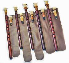 5 PRO DUDUK ARMENIAN 10 REED 5 Case MASTER ABO Apricot Wood NEW Duduc Duduke Mey